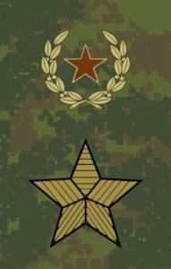 Генерал армии-полевая форма