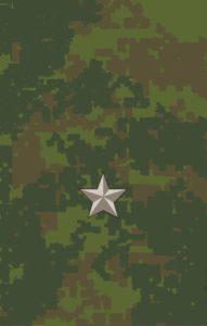 Младший лейтенант-полевая форма