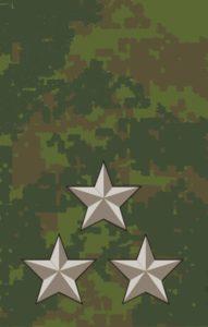 Полковник-полевая форма